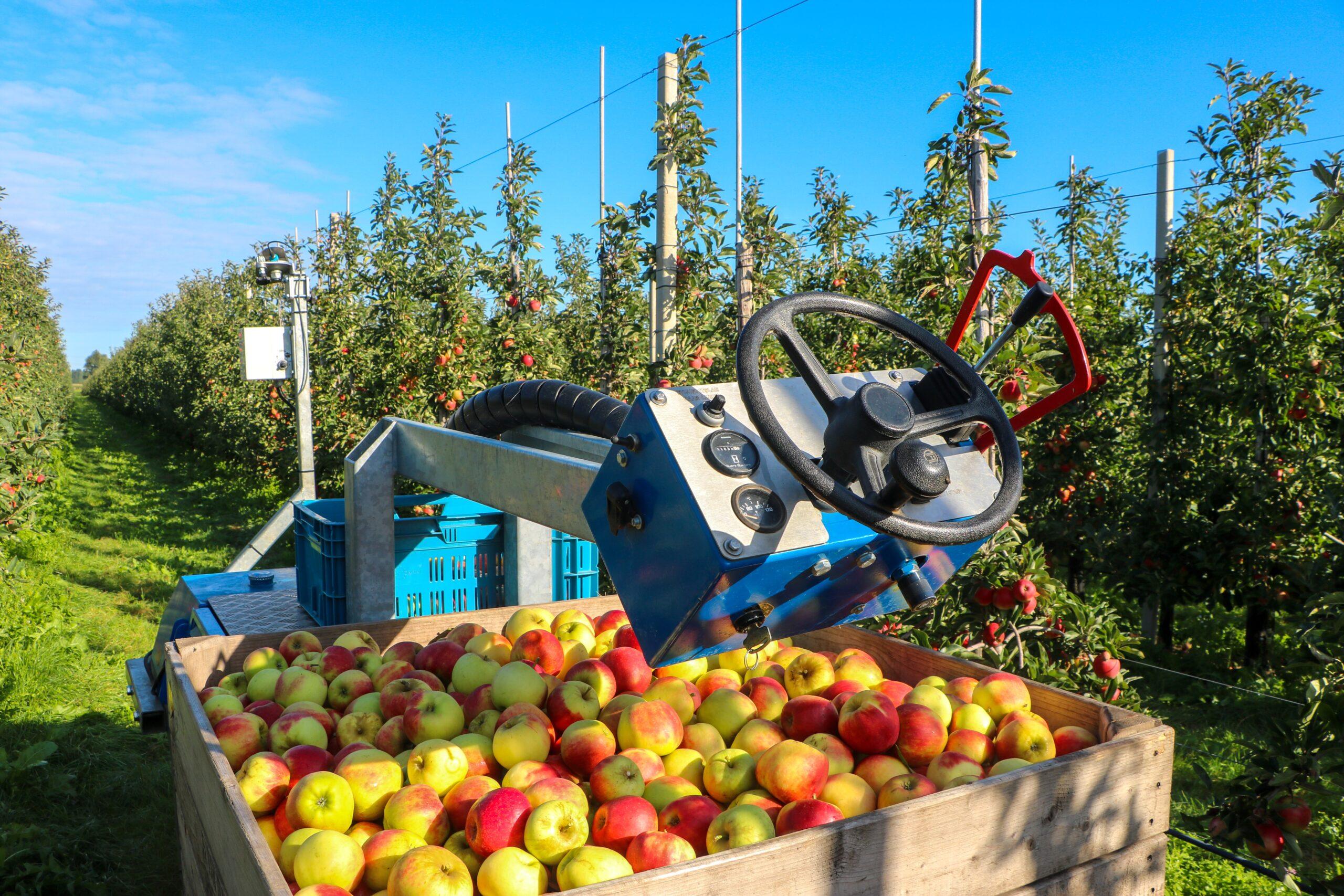 Fruit&Tech