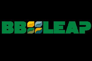 BBLeap